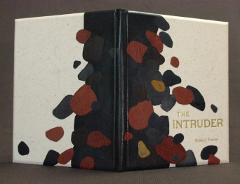intruder-erin-low